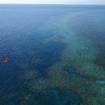 How AI and drones are trying to save the Great Barrier Reef