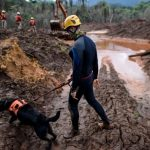 Brazil court convicts mining company Vale in deadly dam rupture