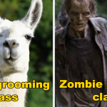 What Was The Weirdest Class You Took In College?