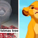 What Do You Think Is The Weirdest Thing About Christmas In Australia?