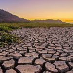 Treating the Climate Crisis Like a Pandemic — Global Issues
