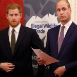 Prince Harry Discusses Where Things Stand Between Him and William